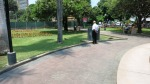 parque kennedy miraflores lima peru cats 2