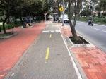 77 carrera 11 bike path bogota colombia